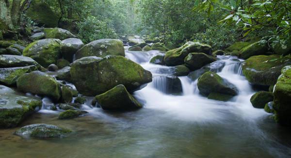 Photograph - Mountain Stream 2 by Larry Bohlin
