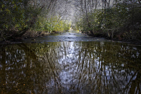 Photograph - Mountain Stream by Ben Shields