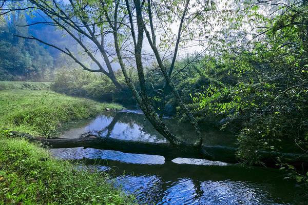 Photograph - Mountain Stream by Debra and Dave Vanderlaan
