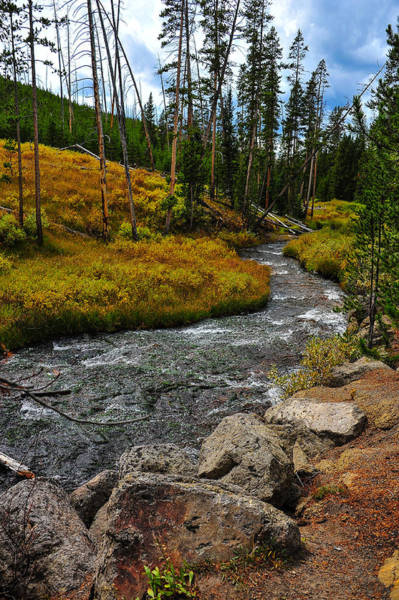 Photograph - Mountain Stream by Harry Spitz