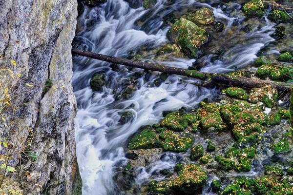 Photograph - Mountain Stream by Ivan Slosar
