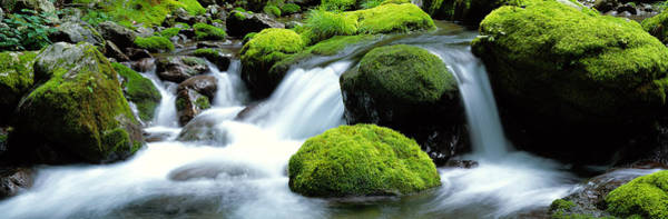 Wall Art - Photograph - Mountain Stream Kyoto Japan by Panoramic Images