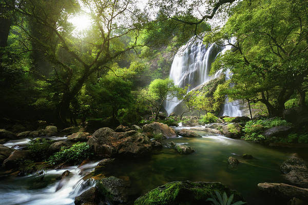 Water Fall Photograph - Mountain Stream by Patrick Foto