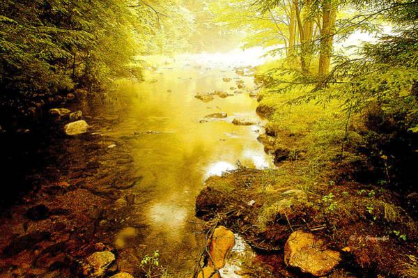 Mountain Stream Summer Art Print