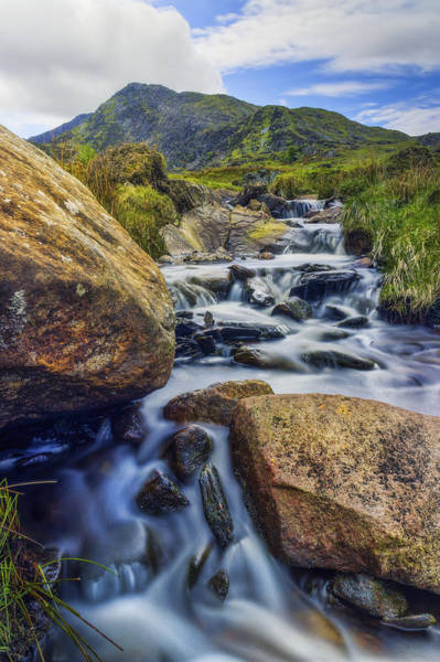 Photograph - Mountain Top Stream by Ian Mitchell