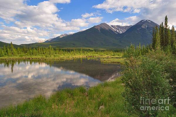Photograph - Mountain View by Charles Kozierok