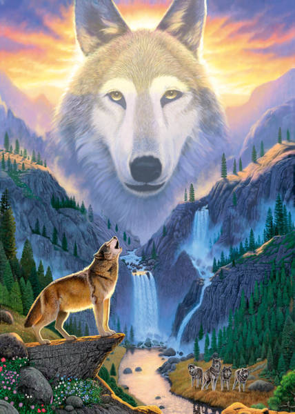 Howling Photograph - Mountain Wolf by MGL Meiklejohn Graphics Licensing