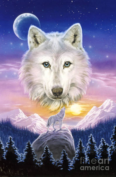 Woodland Digital Art - Mountain Wolf by MGL Meiklejohn Graphics Licensing