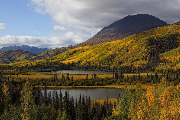 Haines Falls Photograph - Mountains In Autumn Colour Along The by Robert Postma