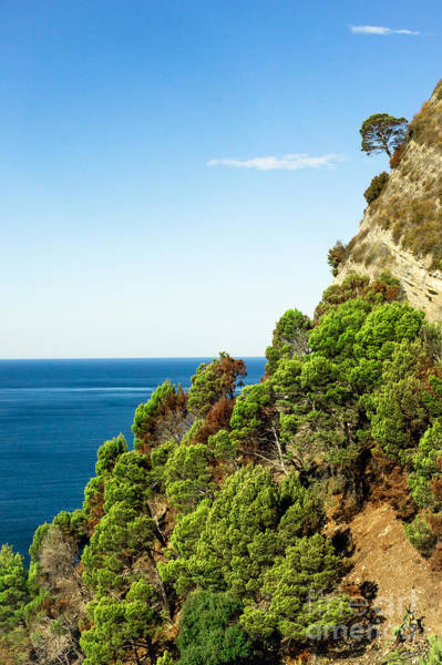 Photograph - Mountainside Western Coast Italy by Prints of Italy