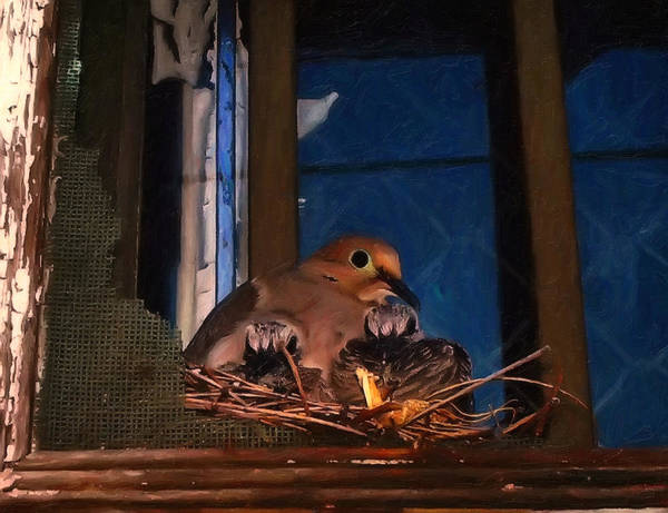 Digital Art - Mourning Dove With Chicks by Chris Flees