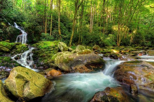 Photograph - Mouse Creek Falls by Carol Montoya