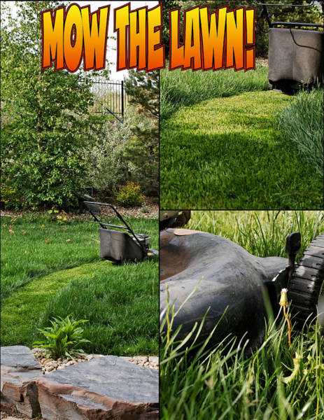 Mow The Lawn Art Print