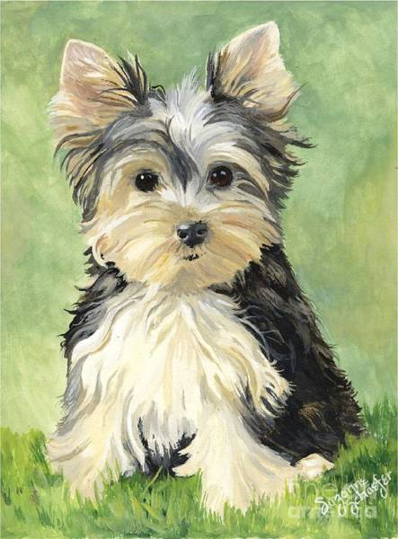 Yorkshire Terrier Painting - Moxie Roxie by Suzanne Schaefer