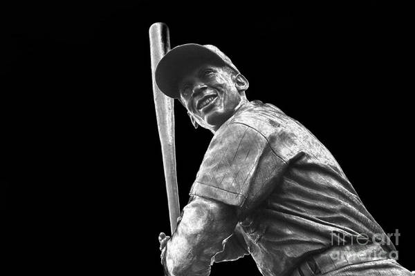 National Baseball Hall Of Fame Photograph - Mr. Cub by David Bearden