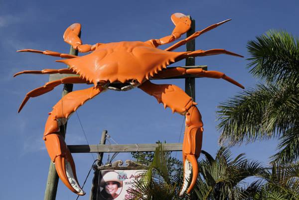 Photograph - Mrs Apples Crab Shack Crab by Bradford Martin
