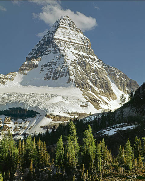 Photograph - 103460-mt. Assiniboine by Ed  Cooper Photography