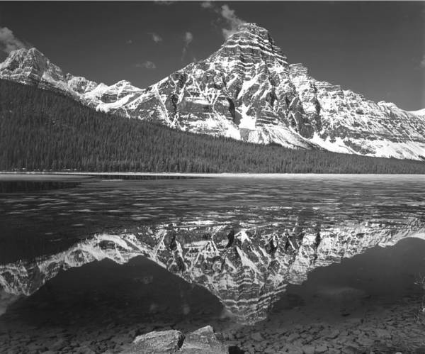 Photograph - 1m3641-bw-mt. Chephren Reflect  by Ed  Cooper Photography