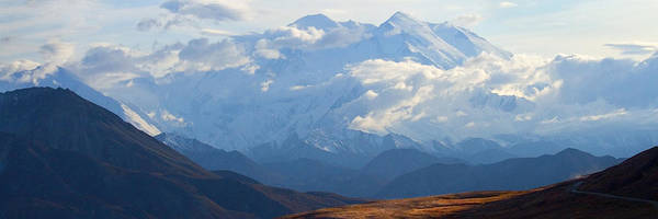 Photograph - Mt. Denali by Ann Lauwers