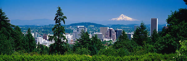 Mountain Range Photograph - Mt Hood Portland Oregon Usa by Panoramic Images