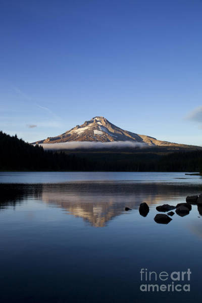 Photograph - Mt. Hood Reflection by Charmian Vistaunet