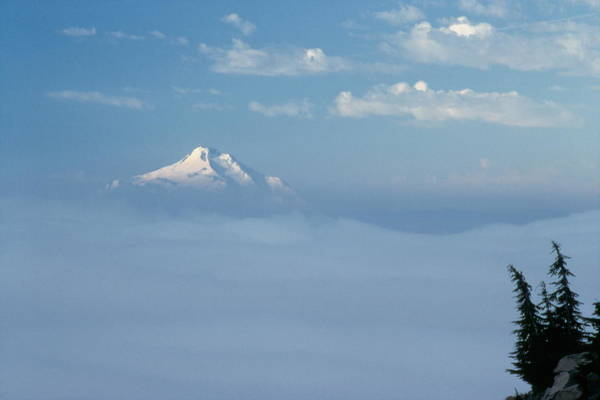 Photograph - Mt. Jefferson by Ken Dietz