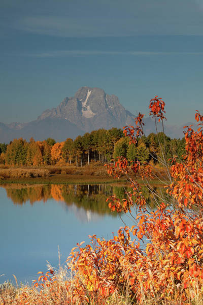 Snake Photograph - Mt Moran And Snake River In Autumn by Carol Polich Photo Workshops
