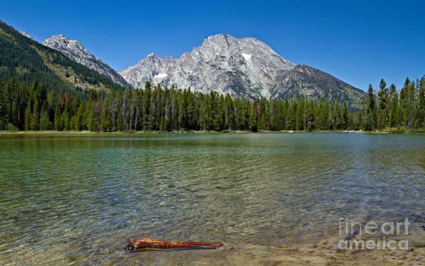 Photograph - Mt. Moran From Leigh Lake by Stuart Gordon