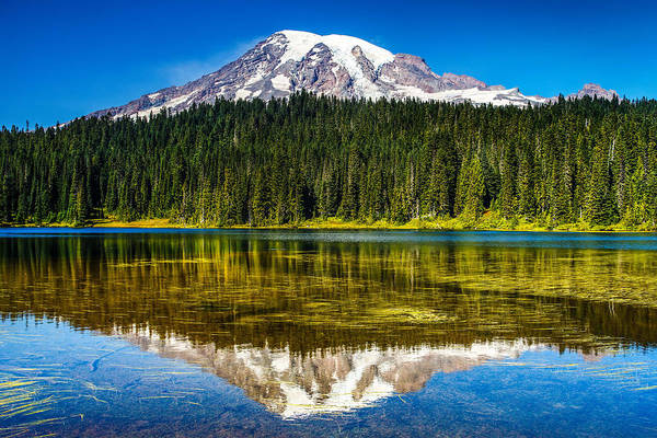 Wall Art - Photograph - Mt Rainier At Reflection Lakes by Angie Vogel