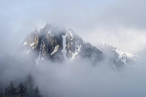 Wall Art - Photograph - Mt Rainier National Park by Steve Gadomski