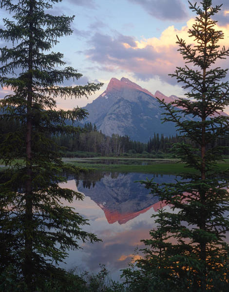 Photograph - 1m3310-mt. Rundle Reflect by Ed  Cooper Photography