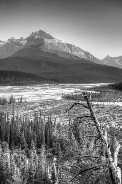 Epaulette Photograph - Mt Starbach Across The Marsh by Douglas Barnett