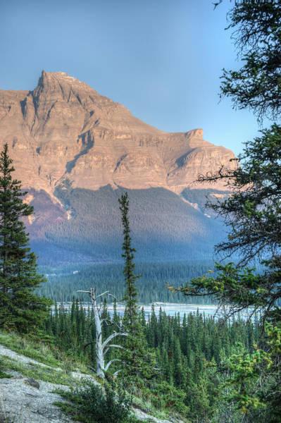 Epaulette Photograph - Mt Starbach Through The Trees by Douglas Barnett