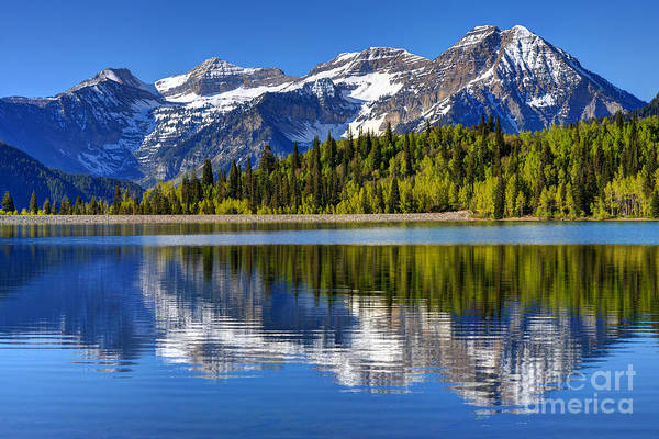Spring Mountains Photograph - Mt. Timpanogos Reflected In Silver Flat Reservoir - Utah by Gary Whitton