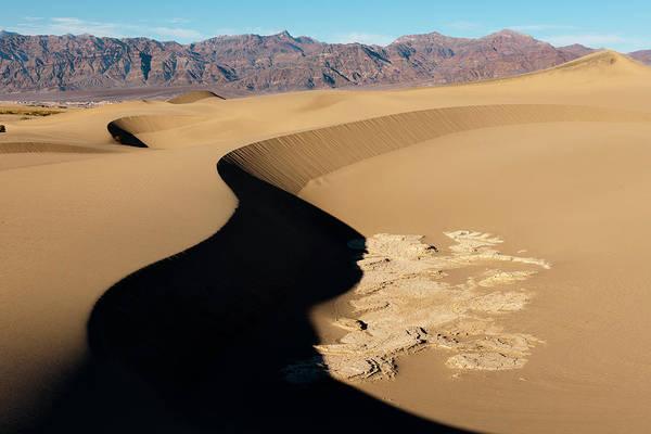 Great Sand Dunes National Park Photograph - Mud Formations In Mesquite Sand Dunes by Ariadne Van Zandbergen