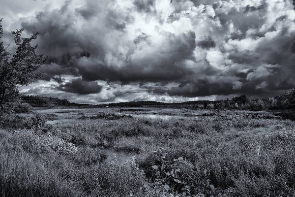 Photograph - Mud Pond Clouds Black And White by Tom Singleton