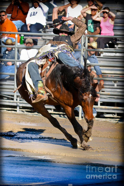 Mission Viejo Photograph - Mud Riders by Gary Keesler
