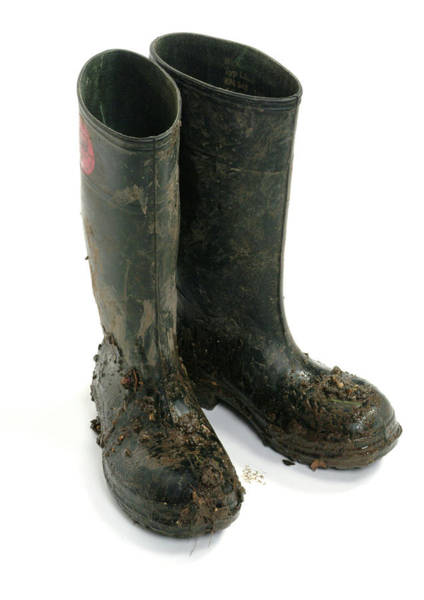 Wellington Photograph - Muddy Wellington Boots by Natural History Museum, London/science Photo Library