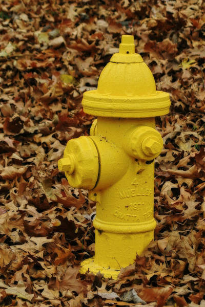 Mueller Fire Hydrant Art Print