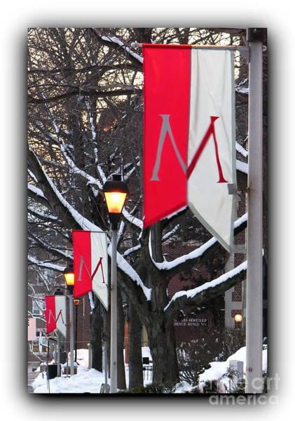 Muhlenberg Photograph - Muhlenberg College Banners Bordered by Jacqueline M Lewis