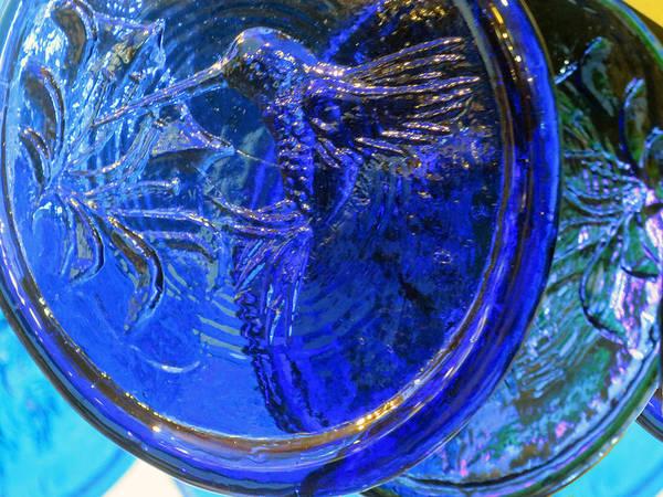 Photograph - Blue Hummingbird by Rick Locke