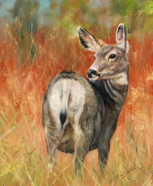 Mule Deer Wall Art - Painting - Mule Deer by David Stribbling