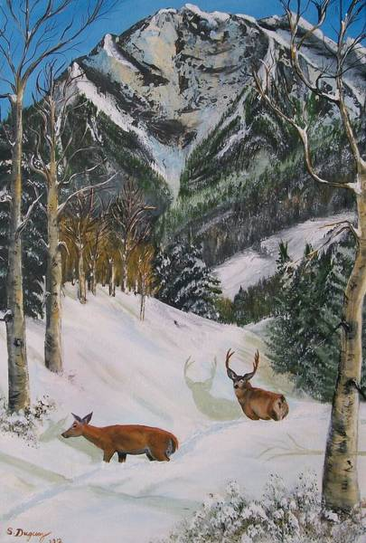 Painting - Mule Deer In Winter by Sharon Duguay
