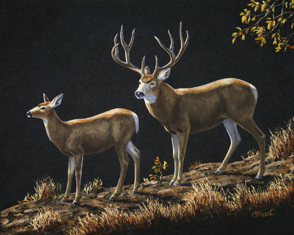 Antlers Painting - Mule Deer Ridge by Crista Forest