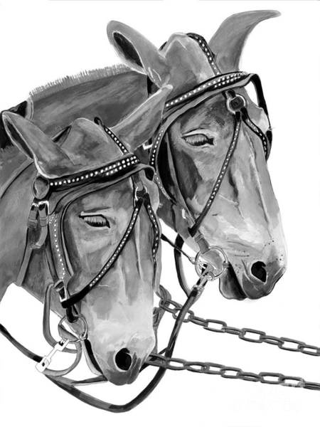 Painting - Mules - Beast Of Burden - B And W by Jan Dappen
