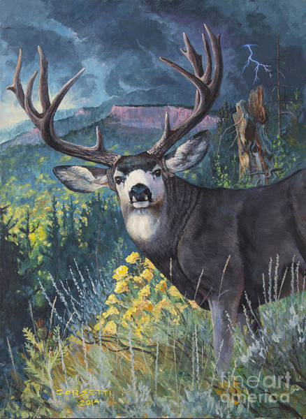 Painting - Mulie Storm by Rob Corsetti