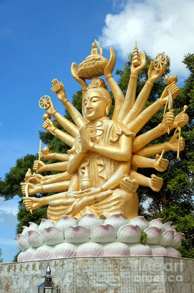 Giant Buddha Photograph - Multi Armed Buddha 06 by Antony McAulay