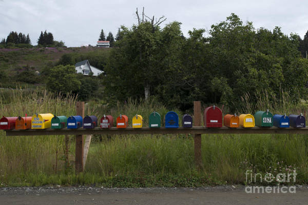Photograph - Multi Colored Mailboxes by Dan Friend