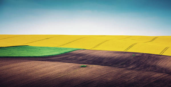 Cultivate Photograph - Multi Colored Panoramic Spring Field by Borchee