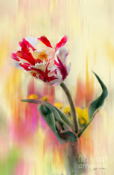 Wall Art - Mixed Media - Multi Colors Tulip Mixed Media Painting by Heinz G Mielke